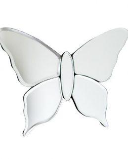 Butterfly Medium